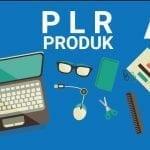 Teknik Jitu Menjual Produk PLR di Market Lokal