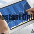 usaha-investasi-online.png
