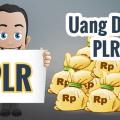 Cara bisnis PLR menghasilkan